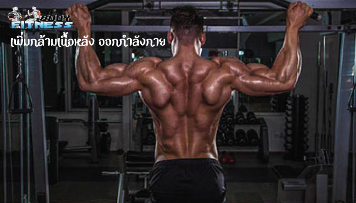 เพิ่มกล้ามเนื้อหลัง ออกกำลังกาย
